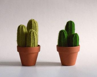 The three friends - Cactus made of wool - knit, handmade, interior design, textile, green art, plant eternal