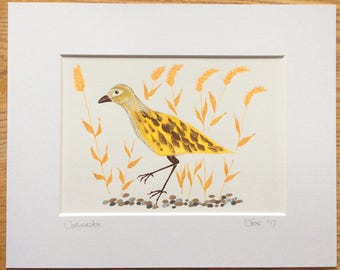 Corncrake, Corncrake watercolour , Bird Art, Bird Watercolour , Bird Lovers Gift, Bird Illustration, Bird Picture, Home Decor