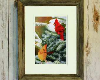 Winter Cardinals 8x10 print matted to 11x14