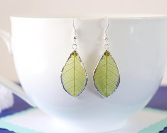 Rubber Leaf Earrings, Green Leaf, Real Leaf Jewelry, Lime Green Real Rubber Tree Leaves, gold, silver, LESM184