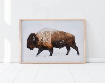Buffalo Art Print, Buffalo Wall Art, Nursery Poster, Buffalo Poster, Bison Art Print, Buffalo Printable, Bison Wall Art, Nursery Bison Print