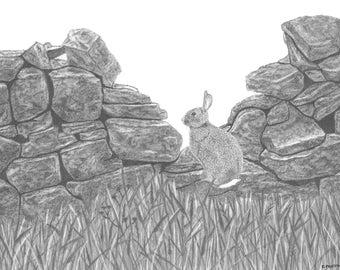 Watchful - Original graphite drawing