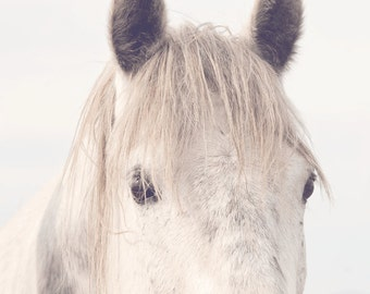 White Horse Nature Photography, Dreamy Horse Photography, Horse Eyes in Art   Physical Print