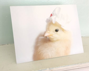 Chicken Wearing A White Ruffled Sleeping Cap Chicks in Hats Baby Animal Cards Cute Stationary #94