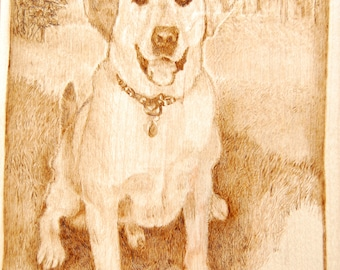 custom dog portrait 1