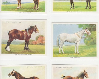 British Cigarette Card Set of 25 Cards. Types of Horse. Originally Issued in 1939 by Players Cigarettes. Large Format Cards
