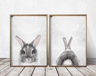 Nursery Wall Art Nursery Decor Gray Rabbit Print Bunny Printable Art Print Download Baby Girl Nursery Print Rabbit Poster