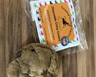 Chocolate Chirp Cricket Cookies