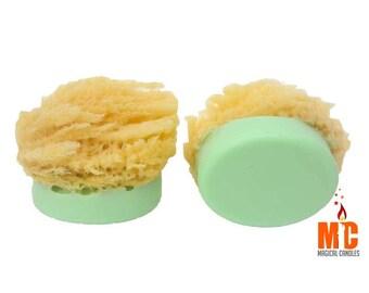 Sponge Shea Butter Soap-Sponge Soap-Beach Soap-Exfoliating Soap-Lime Soap-Shea Butter Soap-Travel Soap-Scrubbing Soap-Beach Wedding Favors