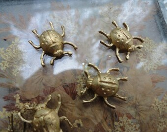 Lucky Ladybugs (3 pc)