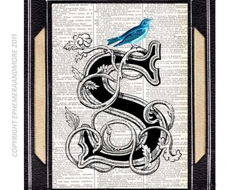 LETTER S initial monogram typography art print wall decor on vintage dictionary book page Text ART Alphabet Blue Bird Birthday Gift 5x7