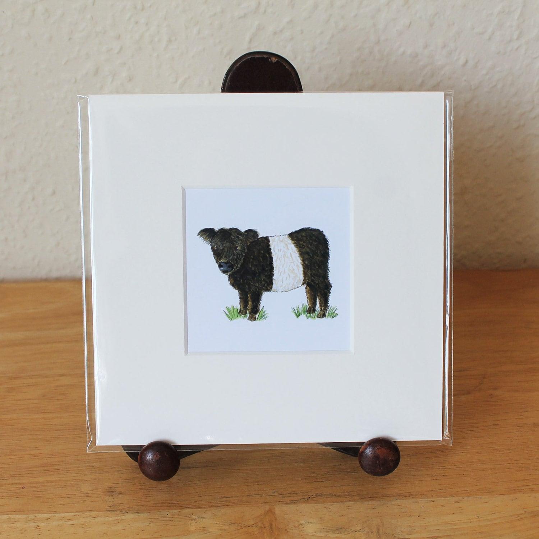 Galloway Beltie montado Mini Print con cinturón Galloway vaca
