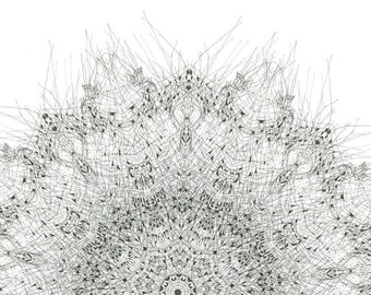 Forms found in nature - Fine art giclee print Archival Print  fine art print black and white mandala nature print abstract form