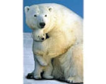 Polar Love Poster
