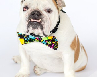 Happy Birthday Hat and Bowtie English Bulldog Card, Fine Art Photography Print, Purrfect Pawtrait Pet Photography, Animal Photography