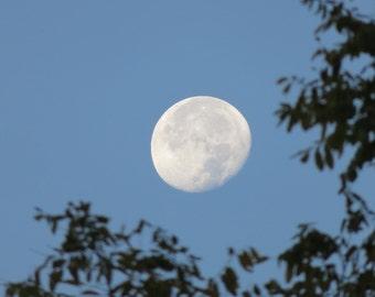 Summer moon....