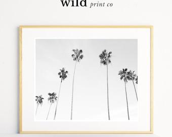 Palm Tree Print, Black and White Palm Trees, Tropical Wall Art, Californian Palm Tree Print, Modern Wall Prints, Palm Tree Photo Printable