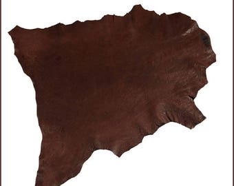 """A124-P-skin leather """"Rustico Dino"""" TWITCHY Brown - XL / /."""