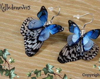 black white blue surgical steel butterfly wings earrings