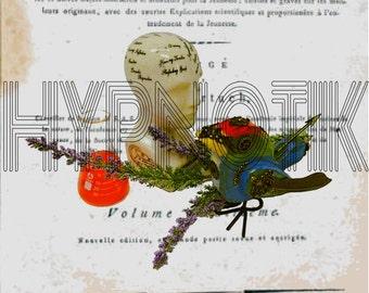 Steampunk Digital Print- Phrenology Head