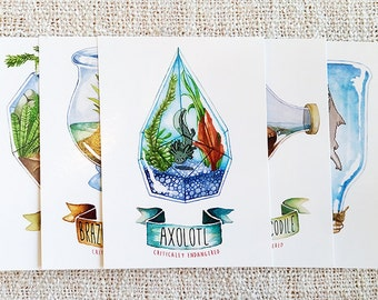 Set of Endangered Animals in Terrariums Postcards / Mini Prints featuring Axolotl, Crocodile, Pangolin, Duck and Shark