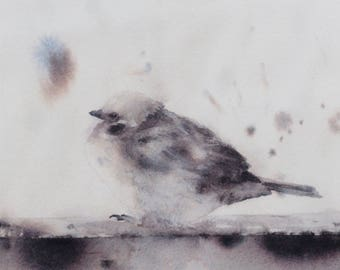Sparrow in watercolor - sparrow print - illustration bird