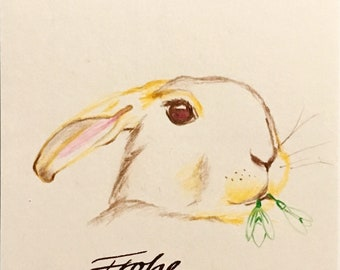 Rabbit with snowdrop