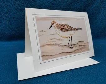 Set of 10 original art sand piper on the beach blank note cards with matching envelopes.