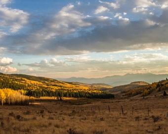 "Limited Edition Rocky Mountain Aspens - Original 11"" x 17"" Photograph Print from Colorado"