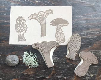 Wild Edible Mushrooms Rubber Stamp Set Chanterelle Bolete Morel