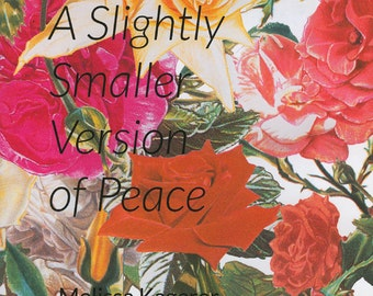 A Slightly Smaller Version of Peace - a color photography zine