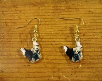 Pug Dog Earrings Earrings 249565