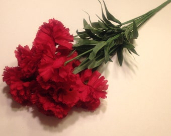 large red carnation bouquet  (SF)