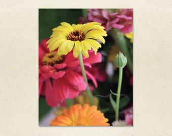 Art Print – Yellow Daisy, 8x10 Flower Wall Art, Yellow Daisy Photograph, Framed or Unframed