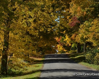 Fall Colors Photography, Driving under a fall canopy, Fall in the Niagara Region, Color Photography, Scenic Photography, Travel Photography