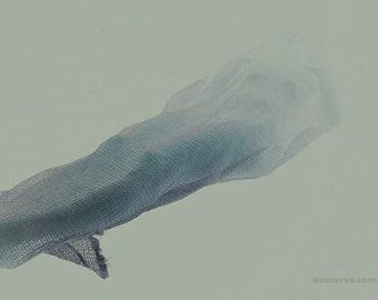 Thinly Veiled: no 4 -  8x12 Print - Fine Art Print