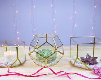 Gold terrariums Glass dodecahedron Cube Geometric terrarium Geometric holder Geometric planter Modern terrarium Succulent