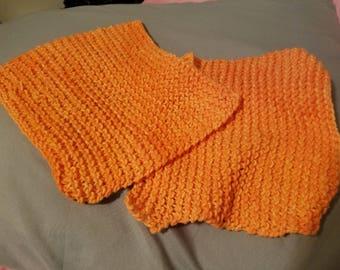 Set of Two Mango cotton knit dishcloths