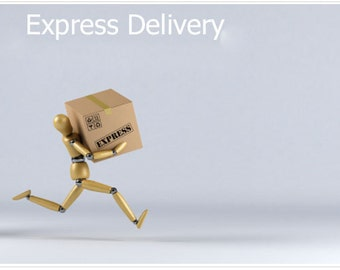 Express delivery, express shipping, worlwide