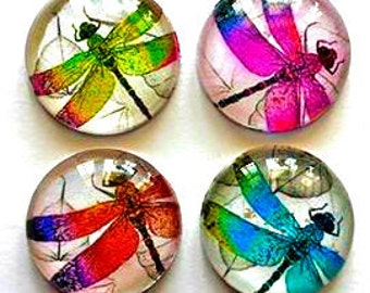 Magnets - Dragonflies - Dragonfly - Set of 4 - 1 Inch Domed Glass Circles - Free U.S. Shipping
