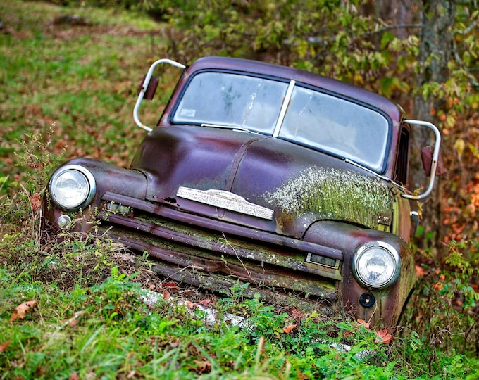 Photography, Old Chevy Truck, Title: Slowly Growing Outof Sight