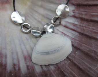 North Sea Beach Shell Necklace