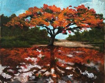 Flamboyan, flamboyant tree, Puerto Rico, scenery, landscape, acrylic painting