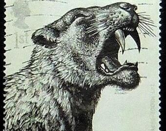 Sabre-Tooth Cat UK -Handmade Framed Postage Stamp Art 14184AM