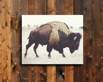 Bison - 16x20 buffalo Canvas print - brown home decor - buffalo - bison - rustic decor - brown decor - buffalo decor - western decor