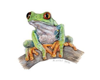 Original Tree Frog Painting - with frame