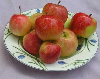 Sweet Apple Melter Tart