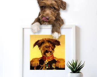 Custom Pet Portrait, Military uniform, regal pet portrait, Regal military, royal Pet Portrait, custom pet portraits, pet portrait, regal pet