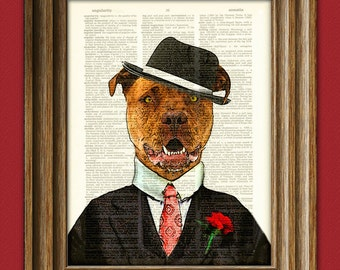 """Pitbull Art Print """"Chopper the Muscle"""" Gangster Pit Bull with hat and suit illustration beautifully upcycled dictionary page book art print"""