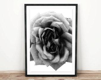 Sticker imprimable. Rose Black 8 x 10 et 11 x 14. botanique, floral, chambre décor, romantique, moderne, noir et blanc botanique